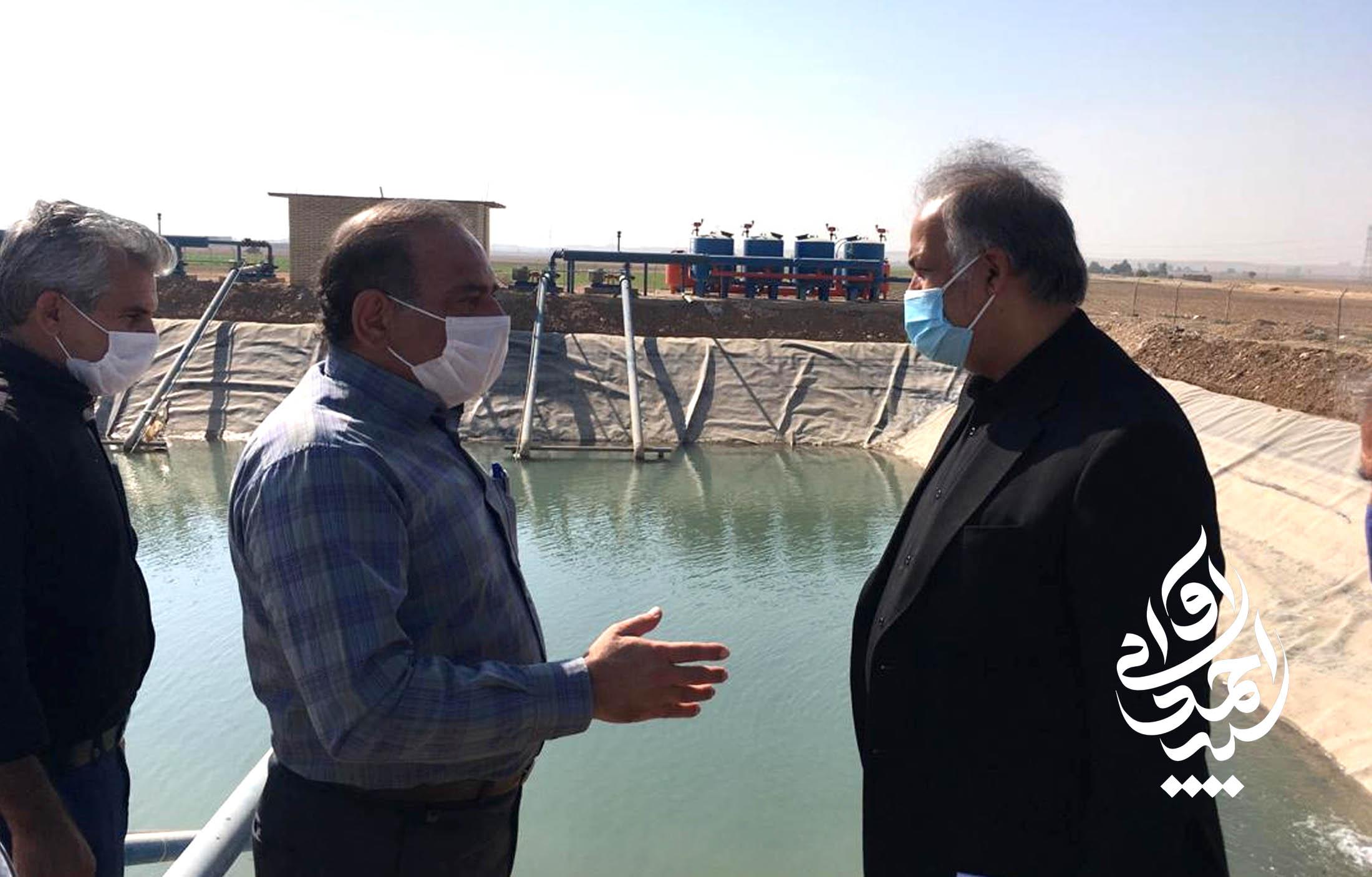 بازدید از زمین های کشاورزی گورسفید جهت حل مشکلات آب رسانی